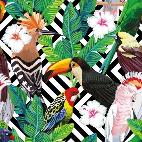 tropikalny-ptak-pozostawia-bezszwowe-tlo-geometryczne