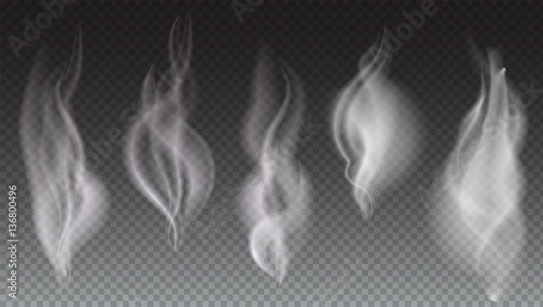 Foto op Plexiglas Rook White smoke waves on transparent background vector illustration