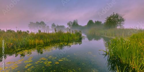 Foggy Marshland river Fototapeta