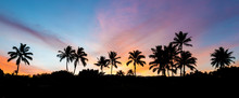 Tropical Sunrise With Palm Trees And A Colorful Sky On The Island Of Maui, Hawaii From Secret Beach