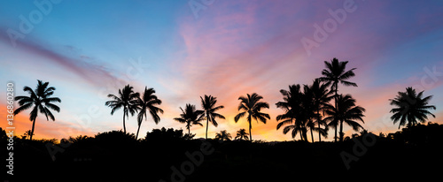 Palmier tropical sunrise with palm trees and a colorful sky on the island of maui, hawaii from secret beach