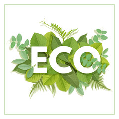 Fototapeta Do biura ECO letter with leaves