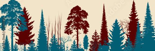 Papiers peints Bleu vert Wide Forest Background - vector illustration
