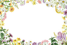 Watercolor Rectangular Frame With Meadow Plants.