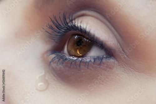 Fotografía  The eye of cryng female