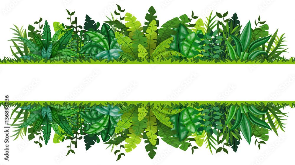 Fototapeta Illustration of a tropical rainforest banner