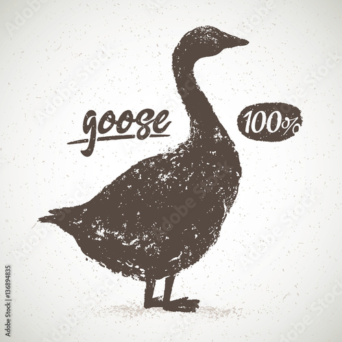 Cuadros en Lienzo Vector silhouette of the goose, with the inscription, hand drawn illustration