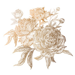 Panel Szklany Peonie Golden peonies on a white background.