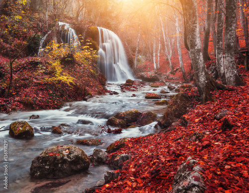 Poster Bordeaux Waterfall. Colorful landscape with beautiful waterfall at mountain river in the forest with red foliage at sunset in autumn. Trees with red leaves. Stones with moss in the water. Blurred water. Nature