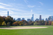Great lawn located in the heart of Central Park during the fall