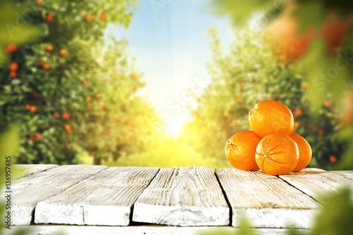 pomarancze-w-pieknym-ogrodzie-na-stole