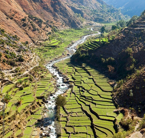 Staande foto Rijstvelden Beautiful terraced rice field in valley around river