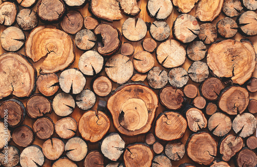 Crédence de cuisine en verre imprimé Texture de bois de chauffage Abstract photo of a pile of natural wooden logs background, top