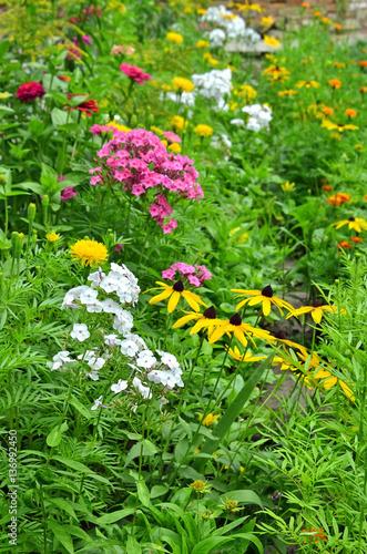 Fotografering  Beautiful rural flowerbed