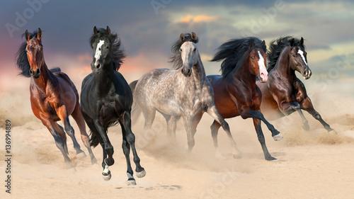 konskie-stado-biegac-galopem-na-pustynnym-pyle-przeciw-pieknemu-zmierzchu-niebu