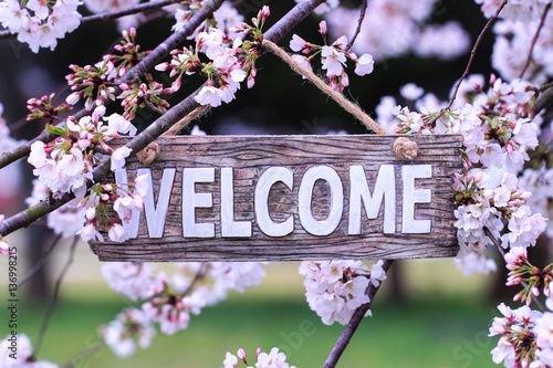 Welcome sign hanging from tree with spring flowers Canvas Print