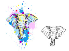 Hand Drawn Illustration With Color And Monochrome Elephant. Vector Eps 8.