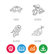 Octopus, turtle and dolphin icons. Jellyfish linear sign. Award medal, growth chart and opened book web icons. Download arrow. Vector