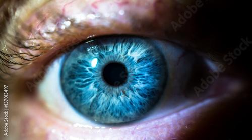 Poster Iris Close up, human eye