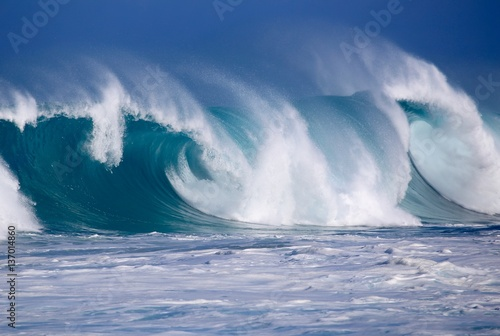 North Shore Winter Waves