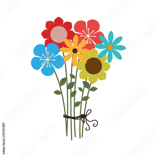 Obraz na płótnie colorful bouquet of several types of flowers vector illustration