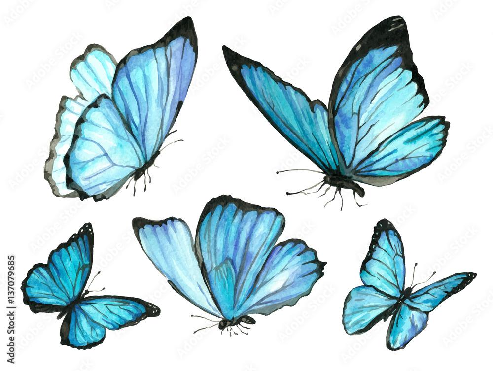 Fototapeta A set of blue watercolor butterfly
