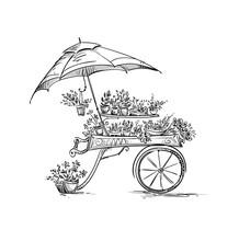 Flower Stall, Florist Cart. Ve...