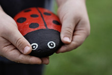 Handmade Ladybird Made From A Painted Stone