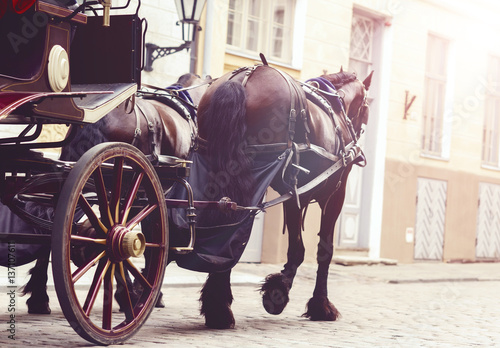 Foto Horse and a beautiful old carriage in old town.