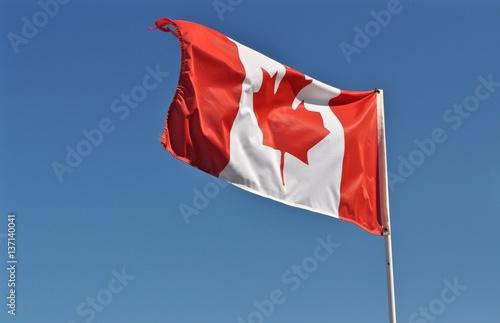 Spoed Foto op Canvas Canada Flagge von Kanada flattert im Wind am blauen Himmel