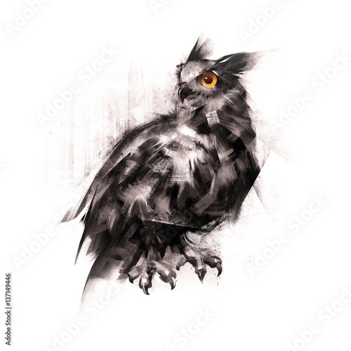 Canvas Prints Owls cartoon painted an owl sitting on a white background sketch