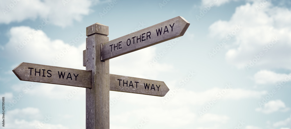 Fototapety, obrazy: Which way to go road sign