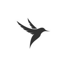 Humming Bird Logo Icon