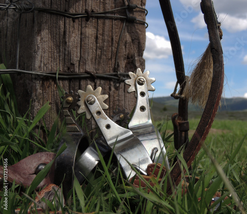 Fotografie, Obraz  Old spurs and mountain skies.