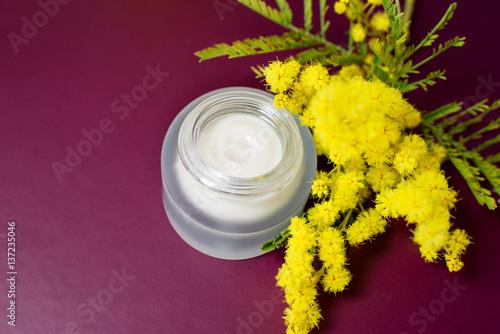 Obraz na plátně  Face cream and mimosa flower, purple background