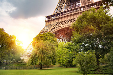 FototapetaPartial view of Eiffel tower with sunset rays through green trees in the park.