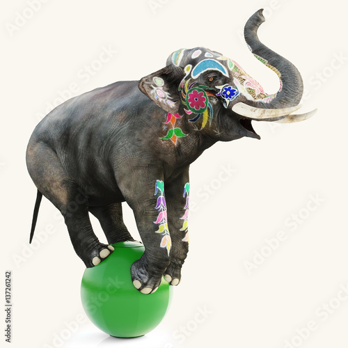 Colorful decorated artistic circus elephant doing a balancing act on a green ball with a isolated white background Poster