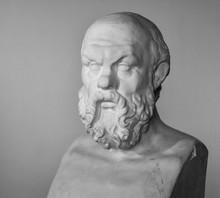 Plaster Bust Of Socrates In Hi...