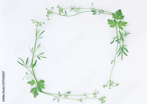 Wall Murals Lily of the valley summer white flower isolated on white background