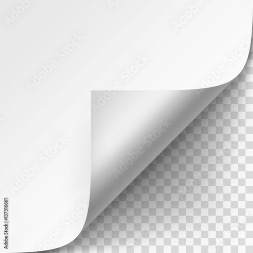 Fototapeta Vector Curled corner of White paper with shadow Mock up Close up Isolated on Transparent Background obraz