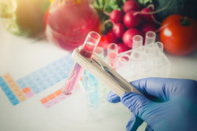 Analyst In Gloves Takes Test Tube. Genetically Modified Food Con