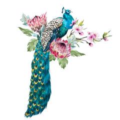 FototapetaWatercolor peacock with flowers