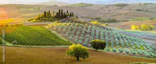 Photo Stands Tuscany Tuscan autumn landscape in the light of the rising sun