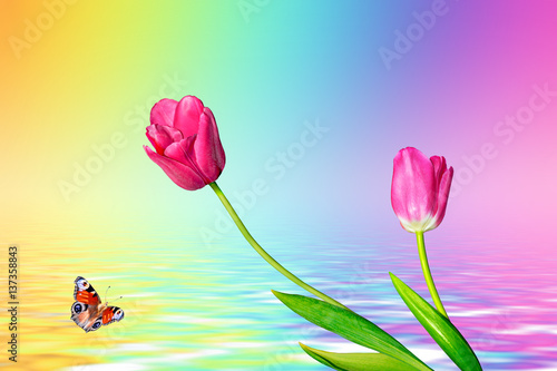 Foto op Plexiglas Turkoois Bright and colorful flowers tulips