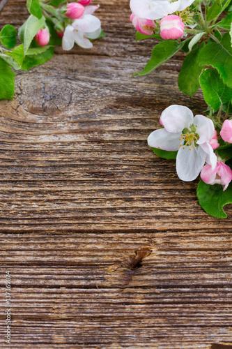 kwiaty-jabloni-z-zielonymi-liscmi-na-drewnianym-tle