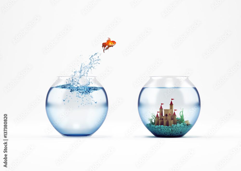 Fototapeta Improvement and progress concept with a jump of goldfish 3D Rendering