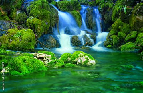 Küchenrückwand aus Glas mit Foto Wasserfalle Mountain stream among the mossy stones