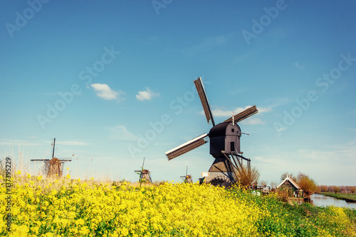 Fotobehang Rotterdam Old Dutch windmills spring from the canal in Rotterdam. Holland.
