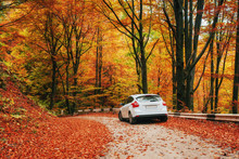Car On A Forest Path. Beautiful Road In Mountains Ukraine