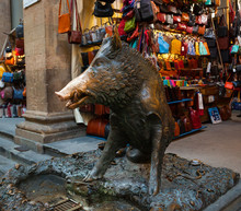 Bronze Pig Fountain In Florence